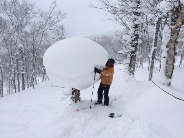 snowlipop